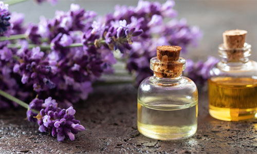 Aroma Flavour Fragrance