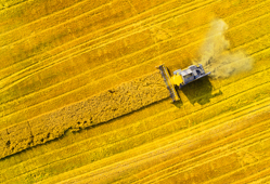 Fuels and Biofuels Composition Profiling