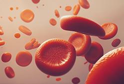 Metabolomic Profiling
